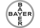 Bayer plc